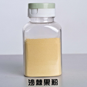 Organic Seabuckthorn Juice Powder
